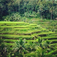 Foto scattata a Ubud da Wayan R. il 10/17/2012