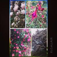 Photo taken at Northernhay Gardens by Anna T. on 3/30/2014
