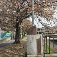 4/10/2016になーちゃんが新川名橋で撮った写真