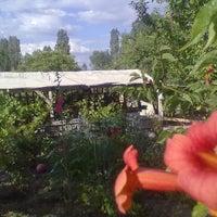 12/17/2013 tarihinde muhittin u.ziyaretçi tarafından Sevgi Anne Gözleme ve Çay Bahçesi'de çekilen fotoğraf