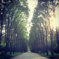 Снимок сделан в Ботанический сад КубГАУ им. И.С. Косенко пользователем Alexander Y. 7/6/2013