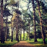 Снимок сделан в Ботанический сад КубГАУ им. И.С. Косенко пользователем Alexander Y. 7/25/2013