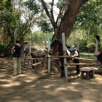 Photo taken at ชมรมอนุรักษ์ม้าไทย แม่เหียะ by Chengmom C. on 5/11/2013