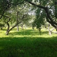 Снимок сделан в Яблоневый сад пользователем Annette G. 5/22/2013