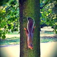 Photo taken at Holland Park by Saul T. on 9/27/2012