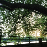 Photo taken at Bishop's Park by Max H. on 6/11/2013