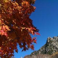 11/3/2014にhisashi o.がみずがき山自然公園で撮った写真