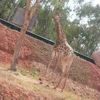 Photo taken at Park zoologique de temara by Kenza K. on 6/5/2013