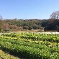 Photo taken at 杉 五兵衛 by keiji on 12/31/2015