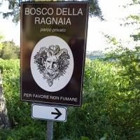 Foto scattata a Bosco la Ragnaia da Tamara P. il 5/1/2013