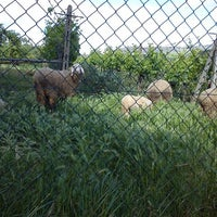 Photo taken at Grottoli Asciano by Tamara P. on 5/24/2013