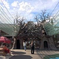 """Снимок сделан в Парк сказок """"Лукоморье"""" пользователем Al♛VtiNa M. 6/29/2017"""