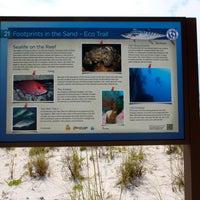 Photo taken at Stop 21 - Pensacola Beach Eco Trail by Pensacola Beach on 8/14/2013