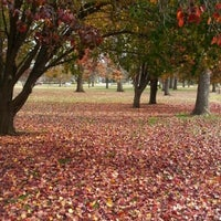 Photo taken at Phelps Grove Park by Dan H. on 11/22/2012