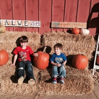 Photo taken at Tom's Farm Market & Greenhouses by David J. on 10/25/2014