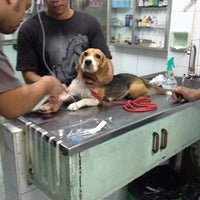 Photo taken at Animal Clinic, Masangkay by Kai C. on 7/11/2013