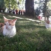 Photo taken at Yeşil Türbe by Abdurrahim Y. on 7/8/2017