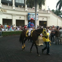 Photo taken at Gulfstream Park Racing and Casino by Courtney M. on 3/31/2012