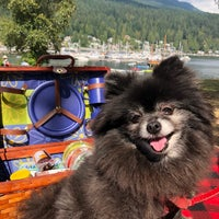 Photo taken at Deep Cove Outdoors by Danielle L. on 9/1/2018