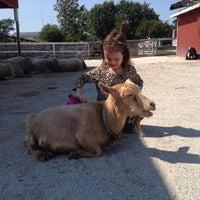 Photo taken at Lambs Farm by Amanda 🦄 A. on 9/23/2014