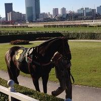 Foto tirada no(a) Jockey Club de São Paulo por Glauco B. em 7/7/2013
