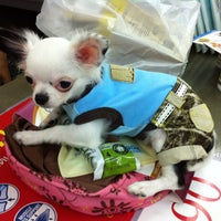 Photo taken at Pet story pet boutique by Siwabhorn A. on 8/29/2013