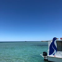 Photo taken at Penguin Island Ferry by Brenda T. on 12/2/2017