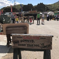 Photo taken at Oatman, AZ by reigny on 3/27/2017