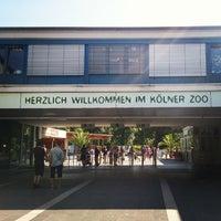 Das Foto wurde bei Kölner Zoo von Gennady S. am 7/19/2013 aufgenommen