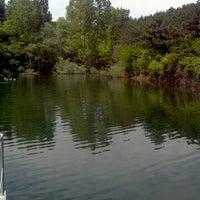 5/11/2013 tarihinde Ömer Ç.ziyaretçi tarafından Gölet'de çekilen fotoğraf