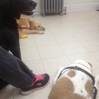 Photo taken at Petworth Animal Hospital by Amber H. on 9/19/2014