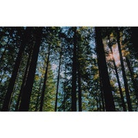 Photo taken at Port Moody, British Columbia by Jeremy P. on 8/26/2014