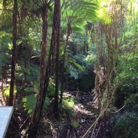 Photo taken at Fred Hollows Reserve by Saffy on 7/15/2013