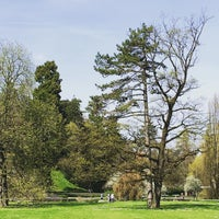 Photo taken at Belvoirpark by Jean-Marc H. on 4/10/2016