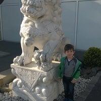 Photo taken at Oriental Garden by Sven A. on 4/15/2016