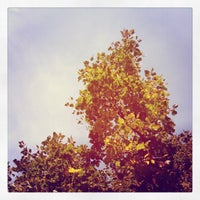Photo taken at Magrath Library by Nicole G. on 9/25/2012