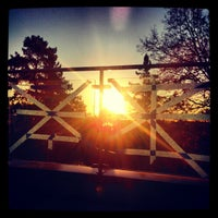 Photo taken at Magrath Library by Nicole G. on 10/30/2012