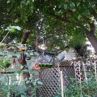 Photo taken at Ddd backyard time by Danielle L. on 7/21/2014