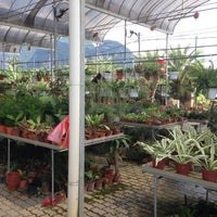 Photo taken at Plum Lim Ent Nursery by Chee Seng T. on 11/23/2013