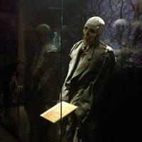 Foto tomada en Museo de las Momias de Guanajuato por Ana G. el 5/26/2013