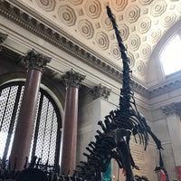 Photo prise au American Museum of Natural History Store par Ana C. le3/16/2018