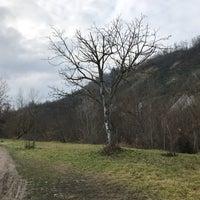 Photo taken at Percorso Vita torrente Lavino by Elena T. on 1/13/2018