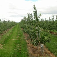Photo taken at Forrence Orchard by Scott A. on 7/24/2013