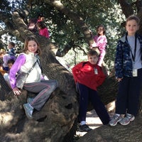 Photo taken at The Kissing Tree by David D. on 11/23/2012