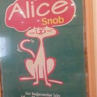 Das Foto wurde bei Alice Pet Shop von Gonca B. am 3/22/2016 aufgenommen