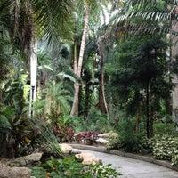 Sunken Gardens - Garden in Historic Old Northeast