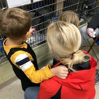 Photo taken at Northeast Animal Shelter by Iurii G. on 11/24/2017