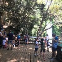 Foto diambil di Banias Waterfall oleh Yaki A. pada 9/25/2018
