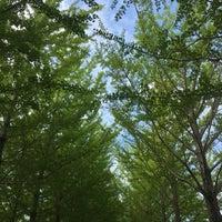 Photo taken at 科学万博記念公園 by Masashi S. on 8/13/2017