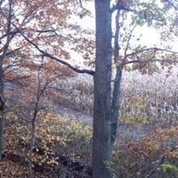 Photo taken at Corn Field Tree by Bobby S. on 10/23/2014